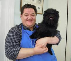 affenpinscher won westminster westminster champion banana joe to make final visit to harrisburg