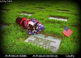 Boston Terrier Flag Zoey The Boston Terrier And Ibostonterrier Com Remember On