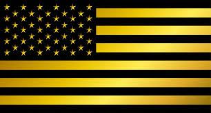 Usa Flag Photos Usa Flag Vector American Flag Black Icons Creative Market