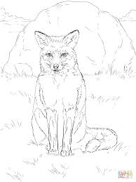 sitting red fox coloring page free printable coloring pages