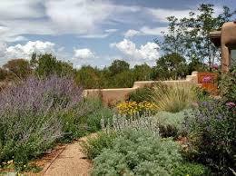 Desert Backyard Ideas 9 Best Desert Backyard Ideas Images On Pinterest Backyard Ideas