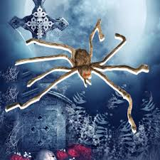 online get cheap giant halloween spider aliexpress com alibaba