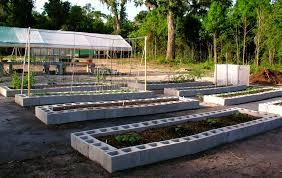 raised garden bed on concrete gardening ideas