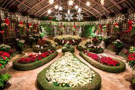 phipps conservatory winter flower show and light garden eat work