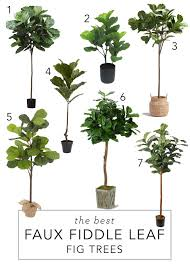 12th and white the best faux fiddle leaf fig trees and where we
