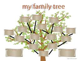 the 25 best family tree template word ideas on pinterest family