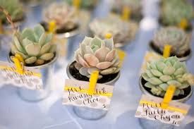 succulent wedding favors 9 wedding favor ideas
