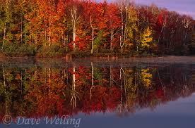 fall color upper peninsula michigan spectacular