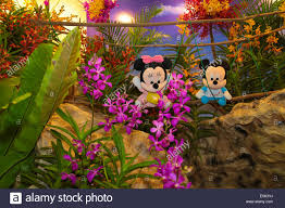 Beautiful Flower Arrangements by Beautiful Flower Arrangements With Mickey And Minnie Mouse Dolls