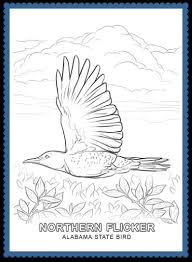 coloring page of alabama state bird coloring pages ideas