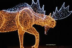 niagara falls christmas lights travel niagara falls on pawing around the winter festival of