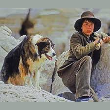 movies with australian shepherds best images of famous dogs and famous dog names