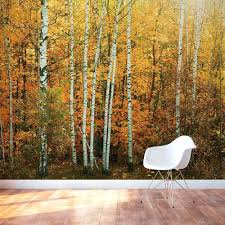 Birch Tree Decor Wall Ideas Fall Path Wall Mural Tree Wall Decor Stickers Tree