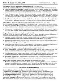 Senior Finance Executive Resume Non Profit Executive Resume 8 Best Images About Resume On