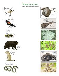 clip art animals and their homes home art