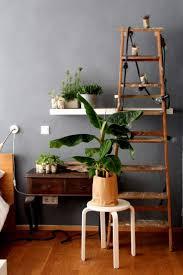 Wohnzimmer Pflanzen Ideen Die Besten 25 Grau Grüne Schlafzimmer Ideen Auf Pinterest Grüne