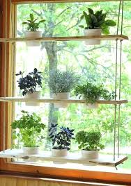 kitchen window shelf ideas kitchen window shelves plants shelves perfect kitchen window shelf