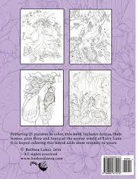 amazon com fairy lane enchanting fairies to color fairy lane