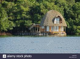 wooden overwater bungalow with thatched roof tropical