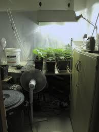 my second flowering room growroom design u0026 setup overgrow com