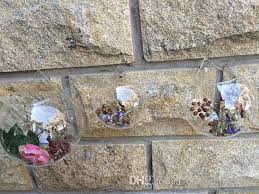 round glass terrariums fish tank wall decor moss succulent planter