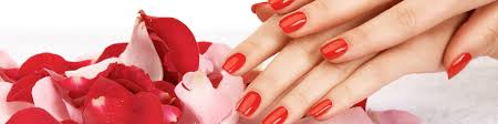 artificial nails nora nails and spa