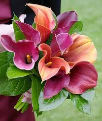 calla colors pictures of calla bridal bouquets lovetoknow
