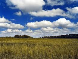 3 kinds of clouds cumulus cloud