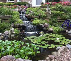 garden pond cleaning garden pond specialists in the midlands uk