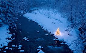 illuminated christmas tree beside a creek in a snow covere u2026 flickr