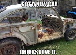 Funny Car Memes - funny car memes garage amino