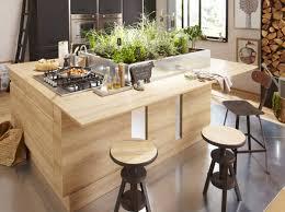 plante cuisine decoration six belles décorations cuisine et salon
