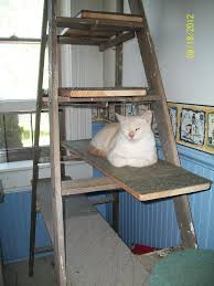 recycled ladder cat tree