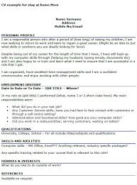 Sample Of Hobbies And Interests On A Resume Best 25 Cv Examples Ideas On Pinterest Professional Cv Examples