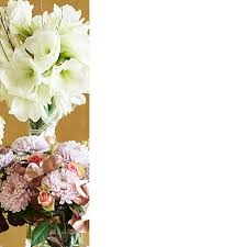 flowers plants free next day delivery m s