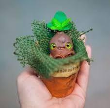 cute plant cute plant monster google search plant creatures pinterest
