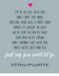 So In Love Meme - i m so in love with you and i hope you know darling your love is