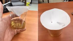 to kill fruit flies according to a scientist