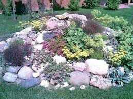 Rocks In Garden Using Rock In Landscaping Create A Beautiful And Low Maintenance