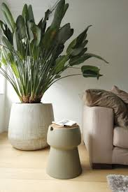 home design 1000 ideas about living room plants on pinterest