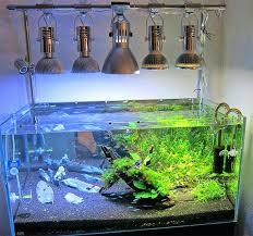 best fan for aquarium 10 gallon aquarium screen lid tank fan aquarium near me captura me