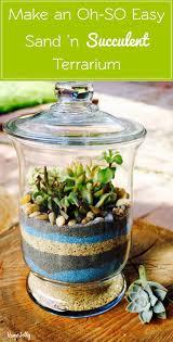 sand u0027n succulents terrarium is so easy to make homejelly