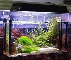 Refugium Light Something Fishy Aquarium Supplies Filters U0026 Filter Media