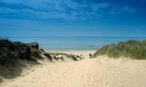 Sand Beach by Camber Sands Beach Hidden Behind A Mountain Of Golden Dunes