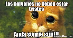 Memes De Nalgones - los nalgones no deben estar tristes anda sonrie siiii meme de