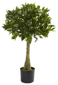 nearly 3 bay leaf topiary uv resistant indoor outdoor