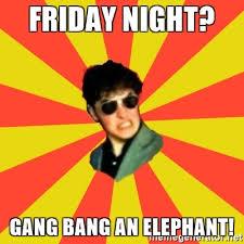 Gang Bang Memes - friday night gang bang an elephant producer slick meme generator