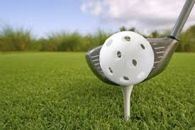 Backyard Golf Course by Fore Try Backyard Wiffle Golf Cabin Living