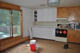Ants In Kitchen Cabinets Invasive Ants Stripping The Kitchen Crazy For Catnip T H E F