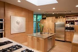 light oak kitchen cabinets modern hugedomains contemporary wood kitchen modern kitchen